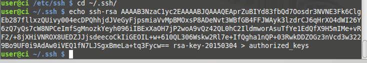 Install SSH and Git on Linux (Continuous integration part 2) images/09-instalar-ssh-git-linux-configurar-maquina-desenvolvimento-windows-integracao-continua/174-append-to-authorized-keys-rsa.png