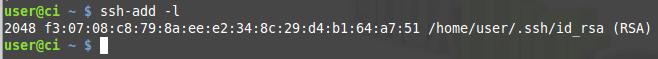Install SSH and Git on Linux (Continuous integration part 2) images/09-instalar-ssh-git-linux-configurar-maquina-desenvolvimento-windows-integracao-continua/189-ssh-verify-indentity-authorization-agent.png